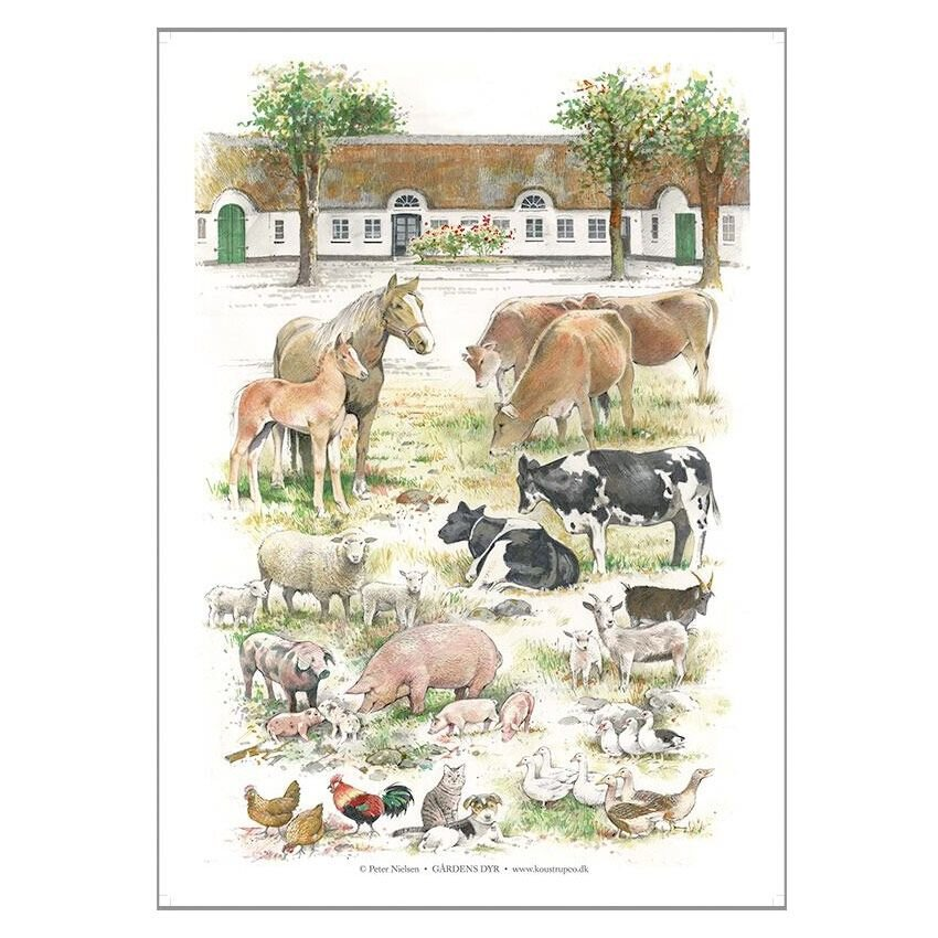 Gårdens dyr Plakat A2