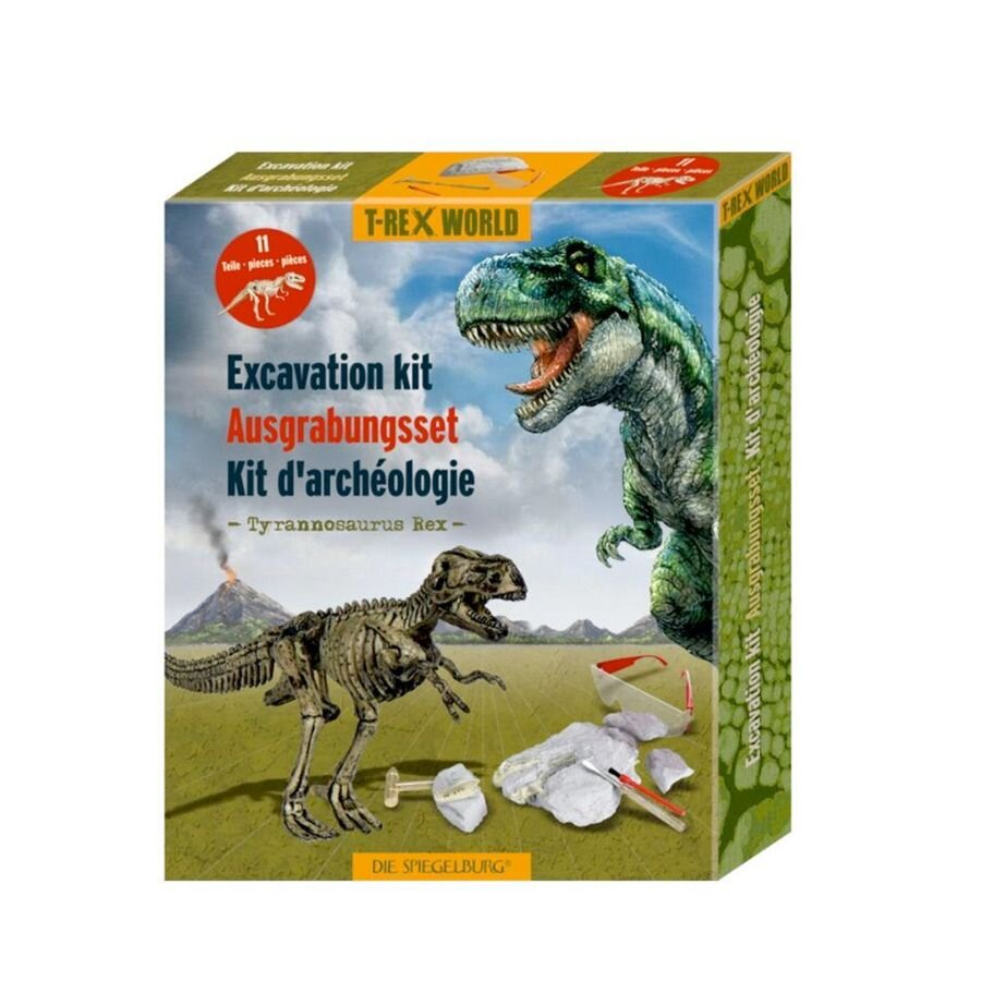 Udgravning Tyrannosaurus Rex